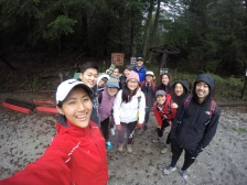 before diving into the forest