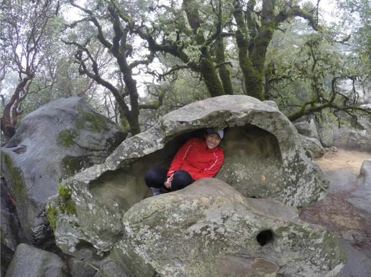me in rock